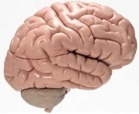 癫痫病的新治疗方法是什么
